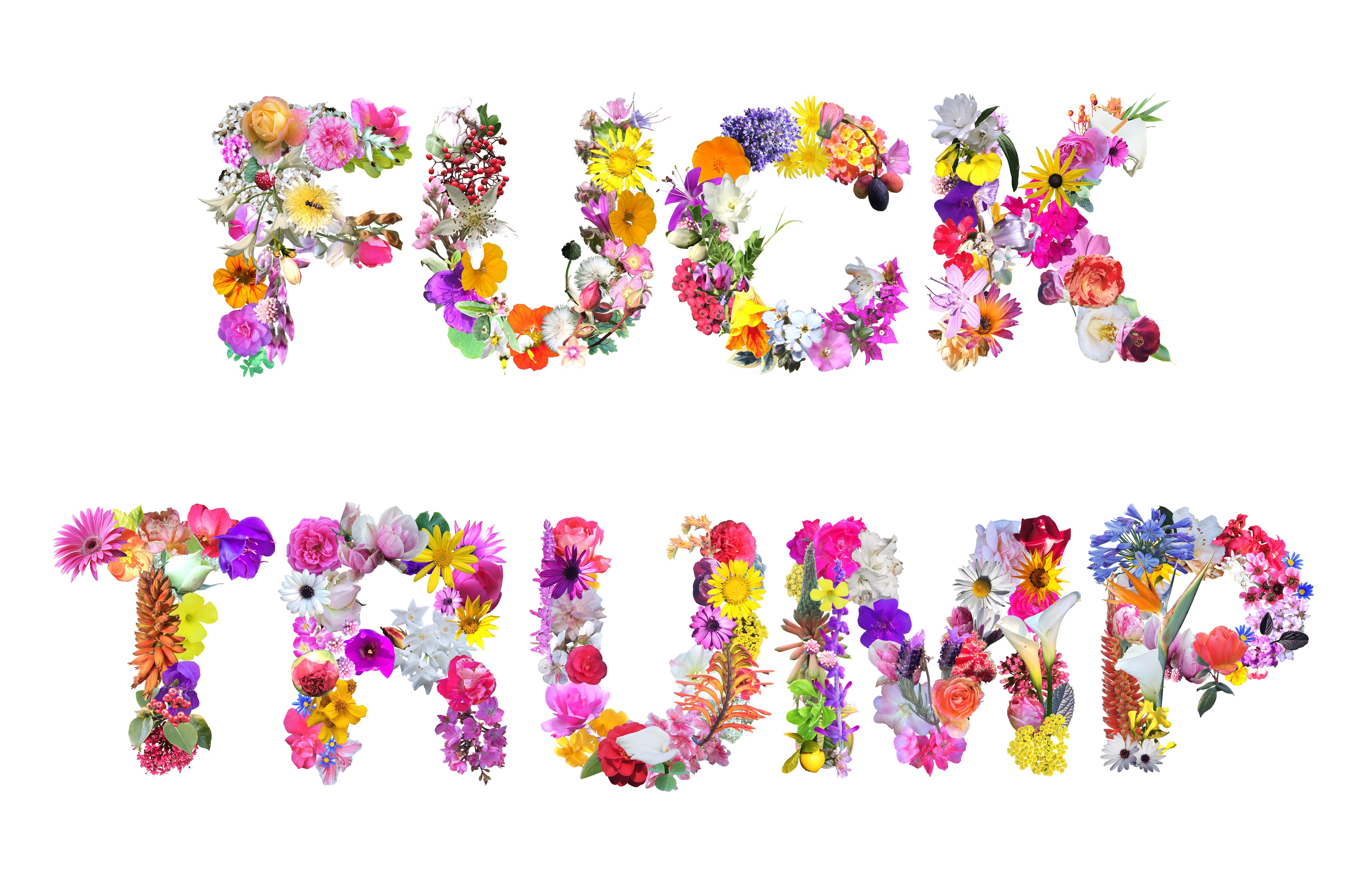 http://www.jennyodell.com/trumpflowers.html